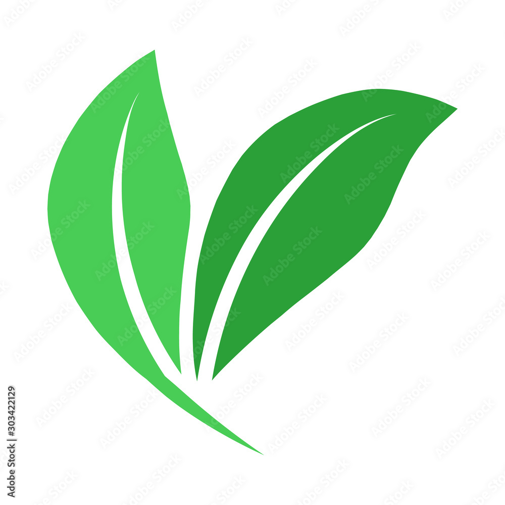 Fototapeta Green leaf