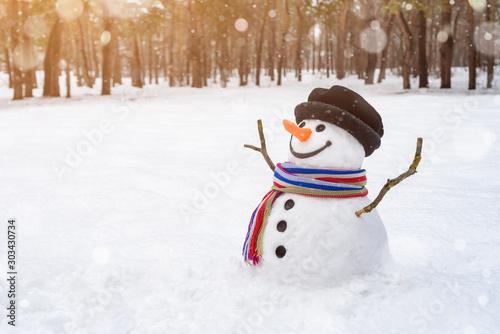 Obraz na plátně Christmas scene with a cheerful snowman in the park