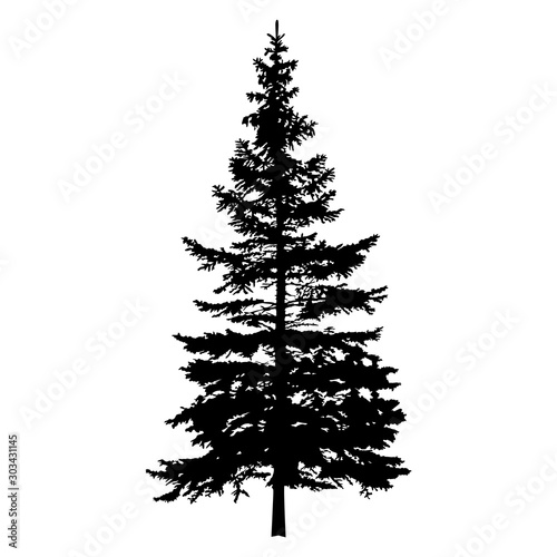 Silhouette of pine tree. Hand made. Wallpaper Mural