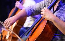 Professional Cello Player's Ha...