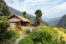 Beautiful House In Nepal, Khumbu Valley,