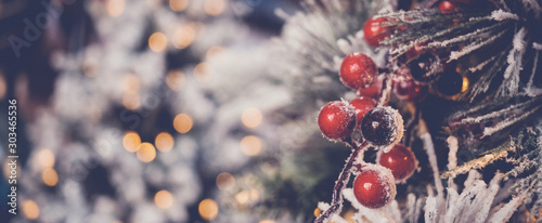 red holly berries and Christmas tree with festive defocused bokeh, holidays back Canvas Print
