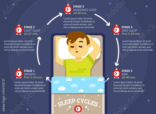Sleep cycle infographics, vector education diagram, poster Canvas Print