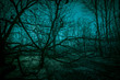 canvas print picture - Horror dense ghostly dark forest. Scary creepy night landscape with clumsy tree branches against the backdrop of the moonlight, mystical glow and strange paranormal shadows in the dusk of darkness