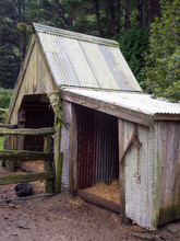 Wooden Shed In A Pig Pen