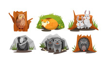 Cute Forest Animals Peepped Ou...