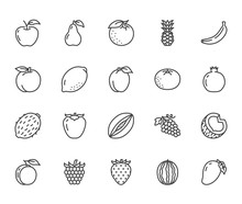 Fruits, Berry Flat Line Icons ...