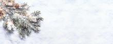 Winter And Christmas Snow Back...