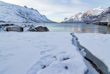 Norwegian Fjord With Icey Creek
