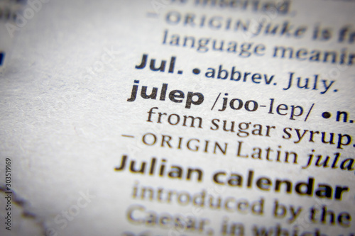 Valokuvatapetti Word or phrase Julep in a dictionary.