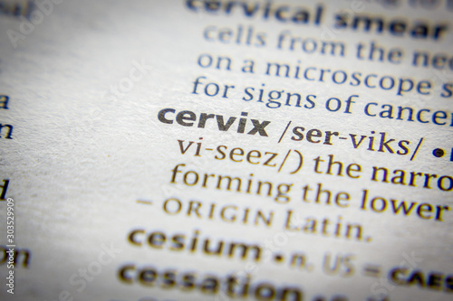 Vászonkép Word or phrase Cervix in a dictionary.