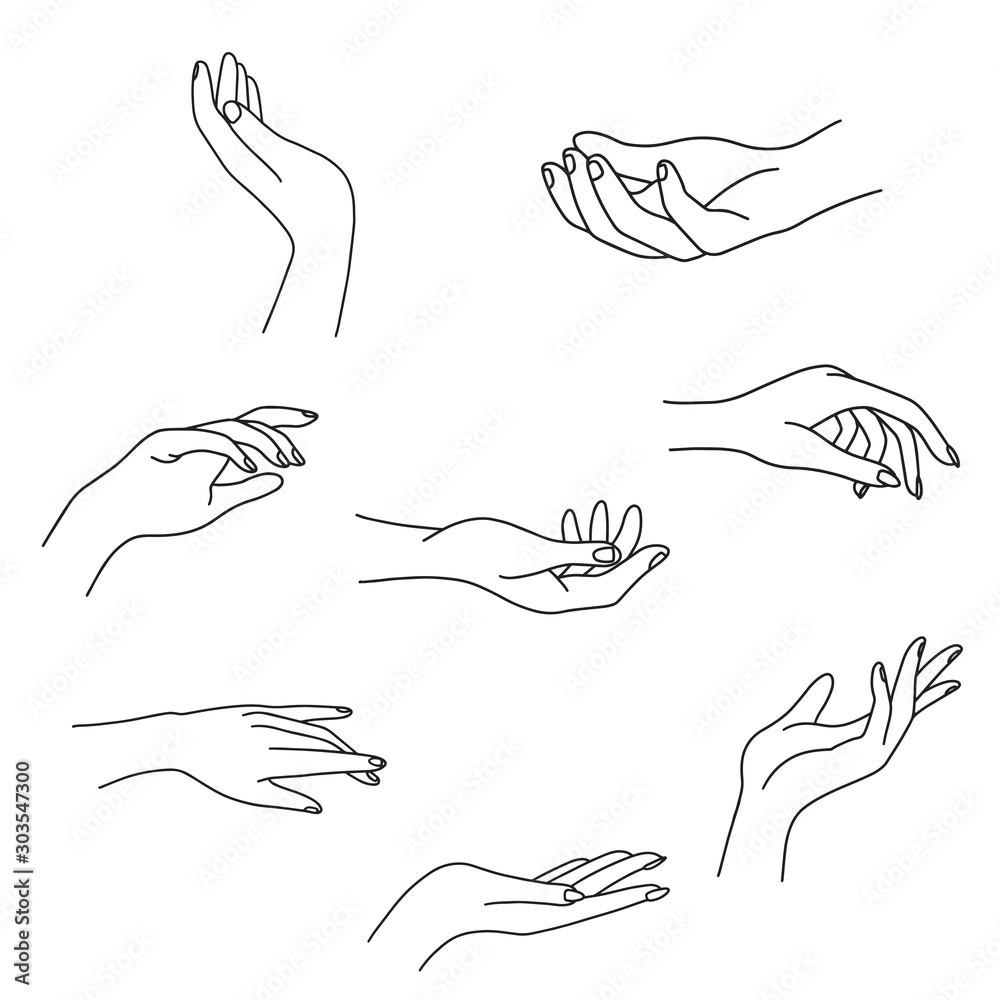 Fototapeta Woman's hand collection line. Vector Illustration of female hands of different gestures - victory, okay. Lineart in a trendy minimalist style. Logo design, hand cream, nail Studio, posters, cards.