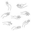 Woman's hand collection line. Vector Illustration of female hands of different gestures - victory, okay. Lineart in a trendy minimalist style. Logo design, hand cream, nail Studio, posters, cards.