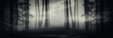 surreal dark forest panorama, fantasy landscape with strange portal in forest at night