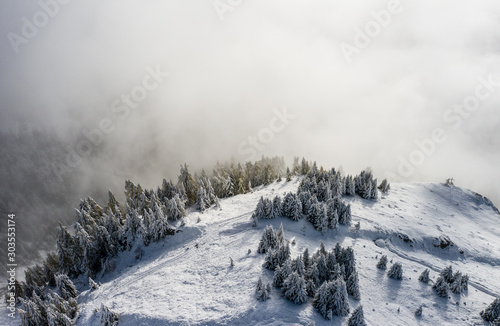 Fototapeta Aerial view of a forest covered with fresh snow and clouds in the Aletsch Arena area. Switzerland in the fall obraz