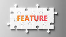 Feature Complex Like A Puzzle - Pictured As Word Feature On A Puzzle Pieces To Show That Feature Can Be Difficult And Needs Cooperating Pieces That Fit Together, 3d Illustration