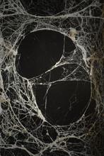 Spider Web Or Cob Web Texture ...