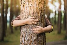 Woman Hug The  Tree