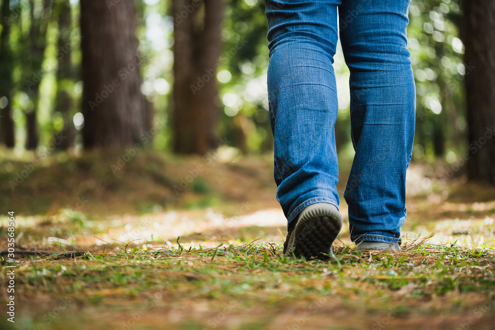 Fototapeta Close up legs walking to the pine forest