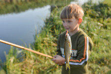 Joyful And Surprised Boy Holds A Fish Hanging On A Fishing Rod.