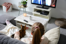 Domestic Life With Pet. A Young Woman Is Sitting On The Couch With Her Cat On Her Lap In The Living Room. She Watches TV While Stroking Her Cat. Woman Binge Watching Tv Via Online Streaming Platform.