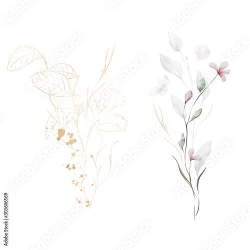 Fototapety, obrazy: Flower Leaf Plant Terrarium