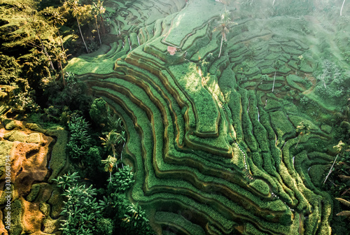 Door stickers Rice fields Aerial drone view. Bali Beautiful Tegalalang's Rice Terrace.