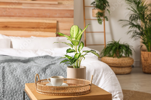 Stylish bedroom interior with green plants. Home design ideas Fototapete