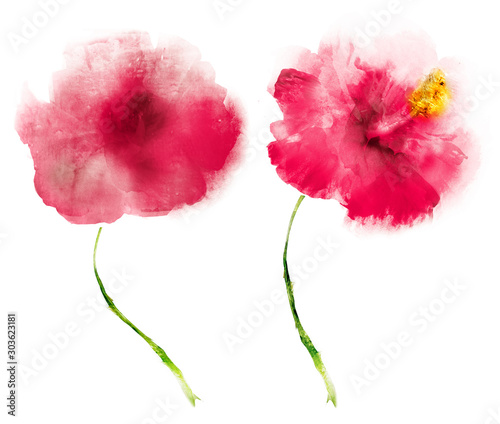 Watercolor flowers , isolated on white background - 303623181