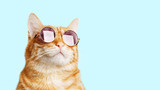 Fototapeta Zwierzęta - Closeup portrait of funny ginger cat wearing sunglasses isolated on light cyan. Copyspace.