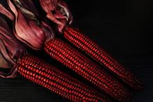 Red Heirloom Indian Corn