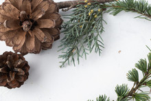 Brown Pine Code With Autumn Pine Branches On Rustic White Background