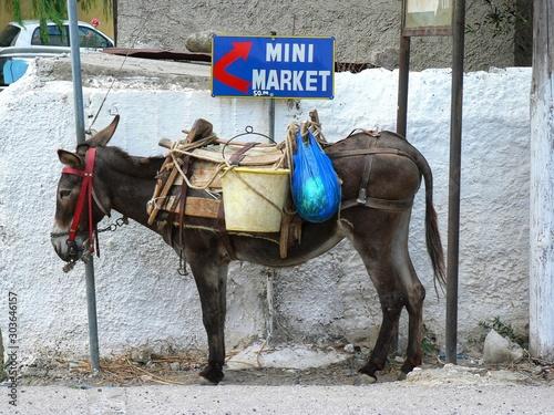 Fotomural  Burro mini supermercado en la isla de creta, grecia