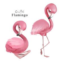 Set Of Cute Flamingo Birds