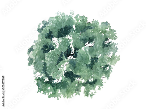 Tuinposter Wit The shape of the watercolor tree top view for landscape design