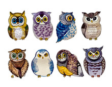 Cute Watercolor Owls On The Wh...