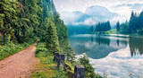 Fototapeta Fototapety z naturą - Stunning morning view of Lacu Rosu lake. Misty summer scene of Harghita County, Romania, Europe. Beauty of nature concept background.