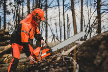 A Chainsaw Operator With A Big...
