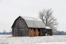 Hay In The Barn