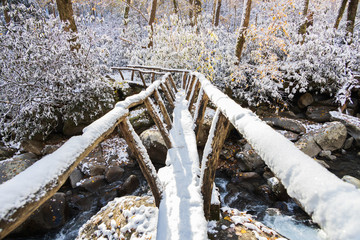 Snow on primitive wooden footbridge over stream at Greenbrier in Great Smoky Mountains National Park