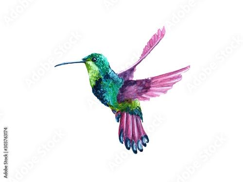 Fotografia Watercolor flying Hummingbird