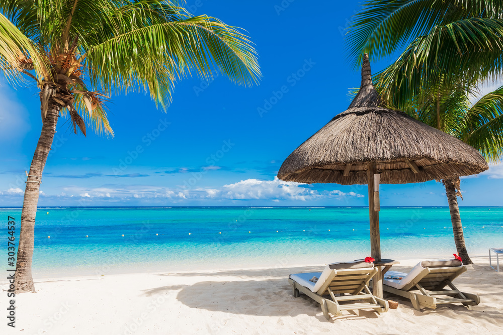 Fototapety, obrazy: Chairs and umbrella at sandy beach with palms. Holiday banner