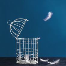 Minimalistic Still Life Of A Birdcage On A Table And Scattered Feathers. The Concept Of Freedom, Break Free, Fly Away From Prison And Other Associations.