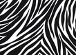 zebra pattern. vector Animals background