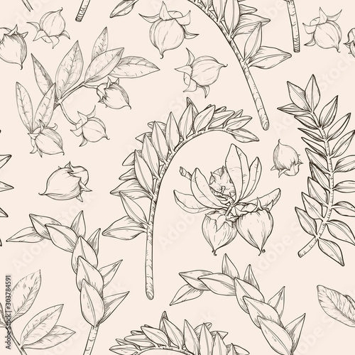 Valokuva  Samless monochrome pattern with jojoba nuts, branch and fruit