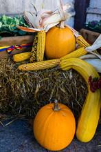 Autumn Concept.  Autumn Composition.  Corn, Orange Pumpkins On A Hay Bale And Autumn Plants And Flowers.
