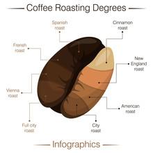 Coffee Roasting Degrees. Infographics