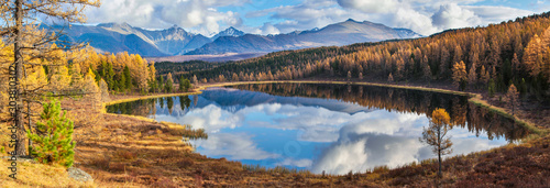 Fotobehang Bomen Panoramic view of the forest lake, Altai, Siberia. Bright autumn day. Taiga, beautiful sky and reflection in the water.
