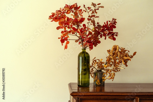 Where To Buy Decorative Branches  from as2.ftcdn.net