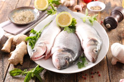 Fototapeta  raw fish dorado with ingredient for recipe